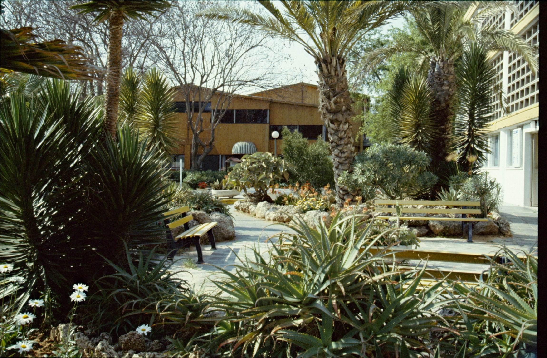 1984_04 (02) Kfar Maccabiah_notre demeure